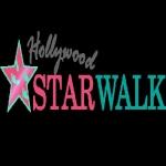 STAR WALK 胸章